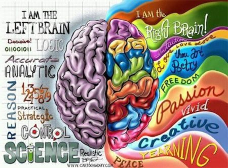 Left brain vs right brain colorful illustration
